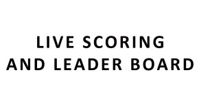 LINK TO 2015 SCORES AND LEADERBOARD